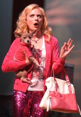Denver, Theatre, Arvada Center, Legally Blonde